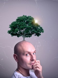 Seed-of-thought